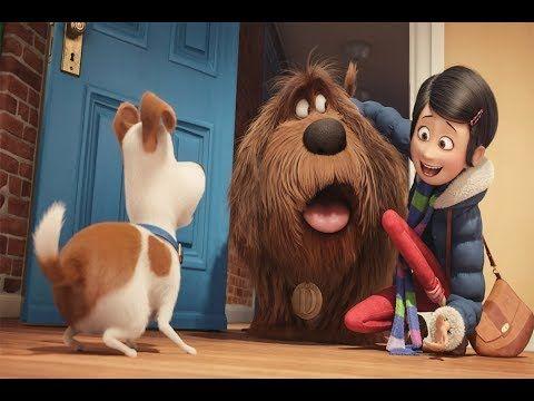 Peliculas Animadas En Espanol Latino Completas Dibujos Animados Para Ninos 2018 Youtube Pets Movie Kid Movies Secret Life Of Pets
