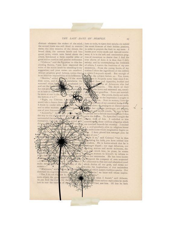 DANDELION art print  dictionary art print by ExLibrisJournals, $9.00