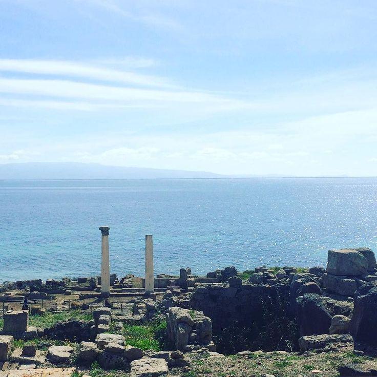 Le rovine di #tharros sul mare del Sinis #sardegna.  Perfette per un #destinationwedding immersi nella storia e nella natura! #sardiniaexperience #archeology #destinationweddings #nature #wildisland