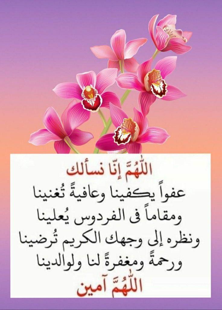 اللهم آمين يارب العالمين Islamic Phrases Words Quotes Words