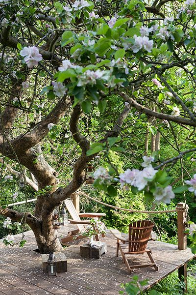 ...nestled in an apple orchard & dotted with lanterns ∫ Also click through for some delightful small-cabin ideas.