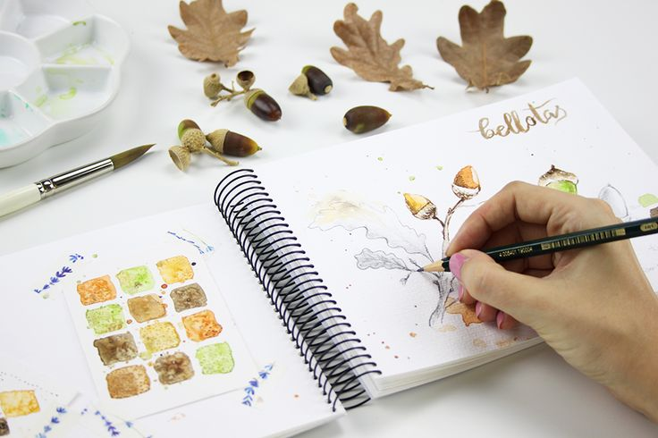 Ilustración botánica otoñal de bellotas pintada con acuarela. - Autumnal botanical illustration of acorns painted with watercolor.