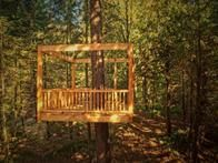 Make your treehouse dreams come true with HGTV Gardens' comprehensive guide of treehouse builders and get expert tips and beautiful treehouse design ideas.
