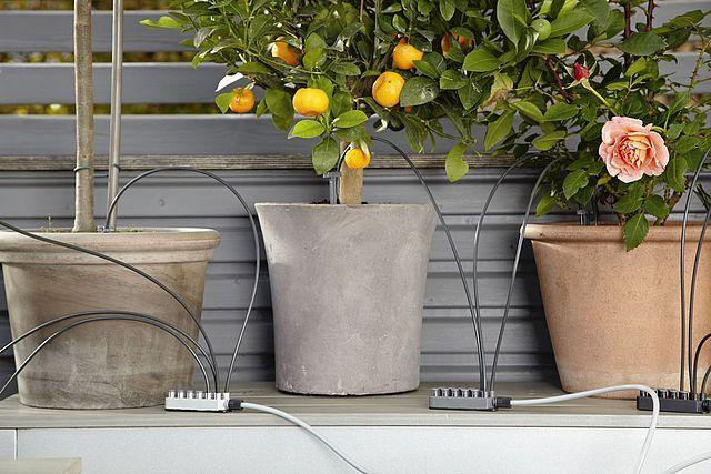In der Stadt ist der eigene Garten eher Wunsch als Wirklichkeit. Trotzdem kann dein Traum von der grünen Oase wahr werden, wenn du einen Balkon oder eine kleine Terrasse hast. Hier kannst du ganz einfach duftende Kräuter- und Blumengärten im Mini-Format anlegen.