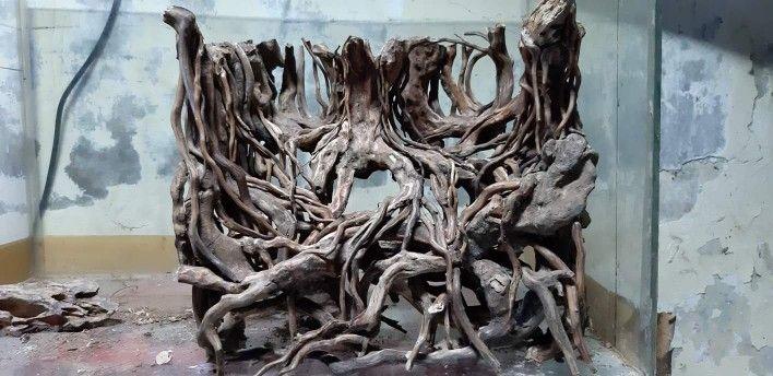 Hardscape Forest Aquascape Akuarium Pohon Bonsai Seni