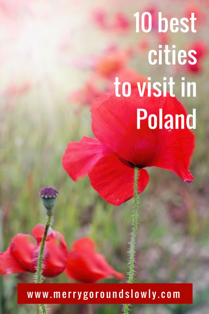 Thinking of less-discovered destination in Europe? Try Poland, a truly beautiful country with so much to explore. Gdansk, Krakow, Warsaw are just some of them. This list will give you some ideas of the cities to include on your itinerary and get you inspired! Click on the picture to read the full article. #poland #polska #warsaw #krakow #gdansk