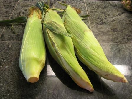 Must try this - how to pull an ear of corn out of its husk -> The Cowgirl's Foodie Blog : Holm Family Cookbook
