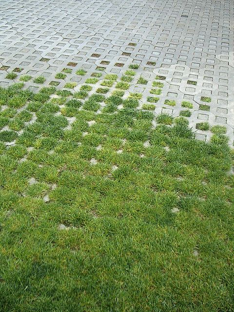 Using a variety of ground coverings in our gardens not only enables us to break up the space, but also to navigate it more easily.