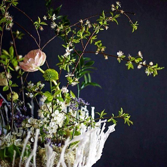 Школа флористики ArtLab думает над тем, чтобы сделать день открытых дверей, так сказать по просьбам трудящихся ��  Вопрос: как много желающих прийти в гости? И каков запрос? ���� #minsk #флористика #артлаб #flowerstagram #букет #красивыйбукет #семинар #flowermagic #floweroftheday #flowers #flowerpower #flowersoftheday #instaflower #flowerlovers #floraldesign #цветы #flowerslovers #flowergram #flower #флористминск #цветыминск #florals #flowerlover #artlab #курсыминск #flowerschool #florist…