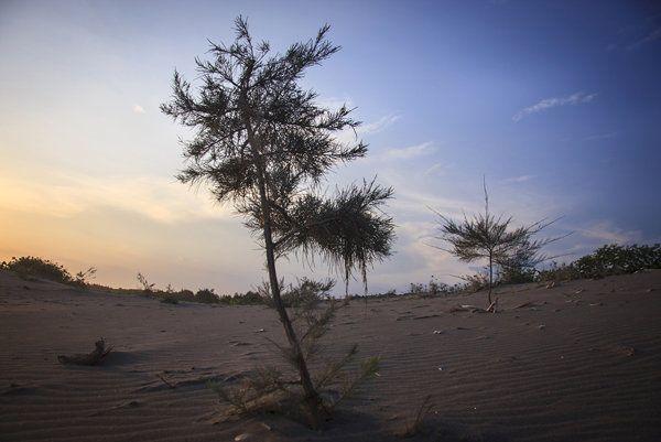 Gumuk Pasir di Pantai Selatan Jogja