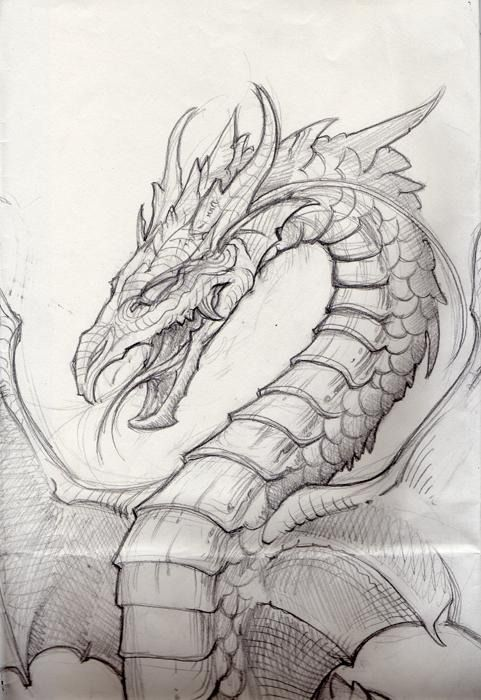 94 best dragons images on pinterest dragon sketch drawings and i had a friend in orchestra who was good at drawing dragons nod oh and this picture is awesome ccuart Images
