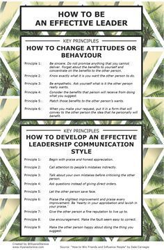 How to be an effective leader #infographic #leadership