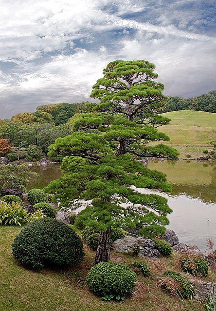 ~~japanese garden by Henri Bonell~~