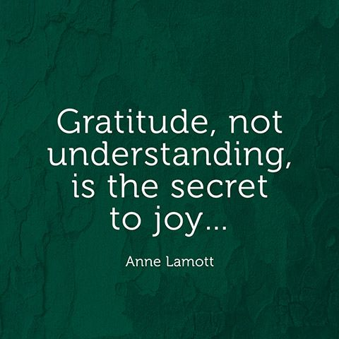 """Gratitude, not understanding, is the secret to joy..."" — Anne Lamott"