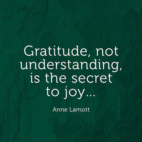 """Gratitude, not understanding, is the secret to joy..."" — Anne Lamott"