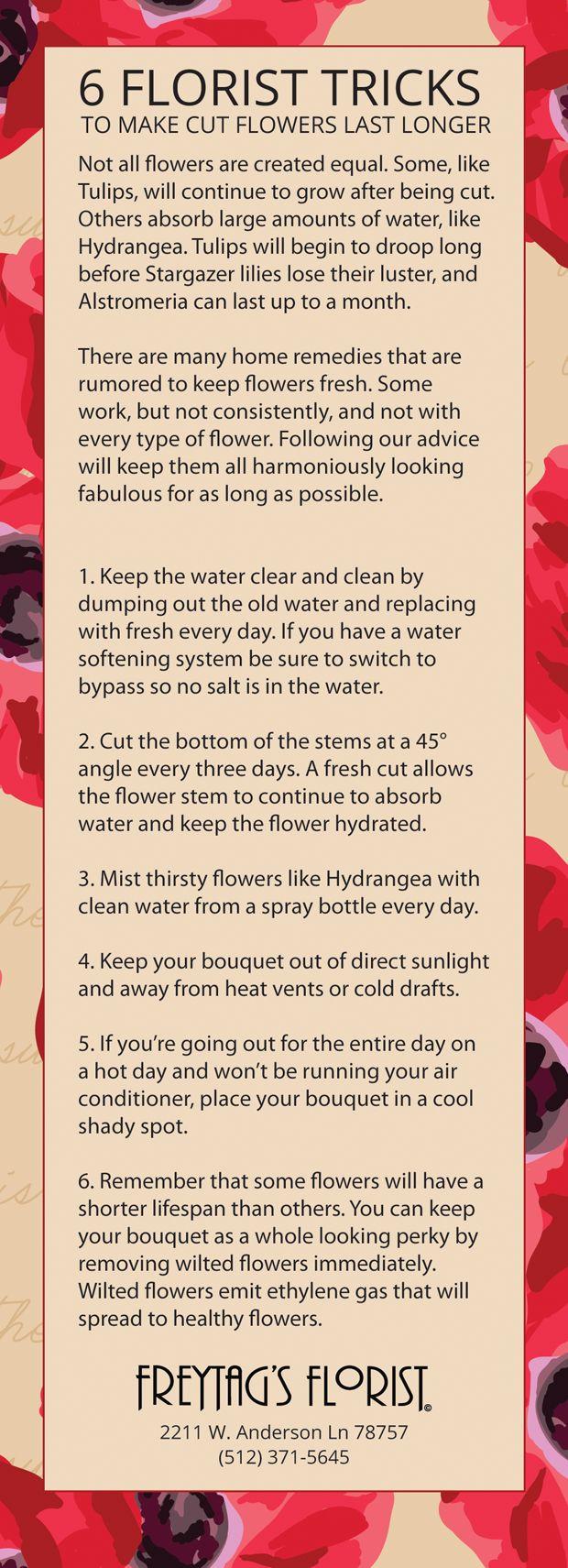 27 Best Pro Tips From A Florist Images On Pinterest Flower Shops