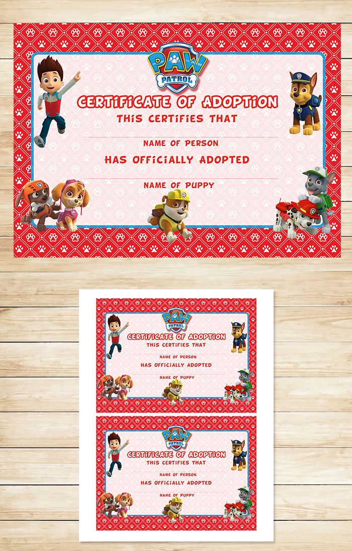 174 best Jou0027jos birthday images on Pinterest Paw patrol birthday - fresh cat birth certificate free printable