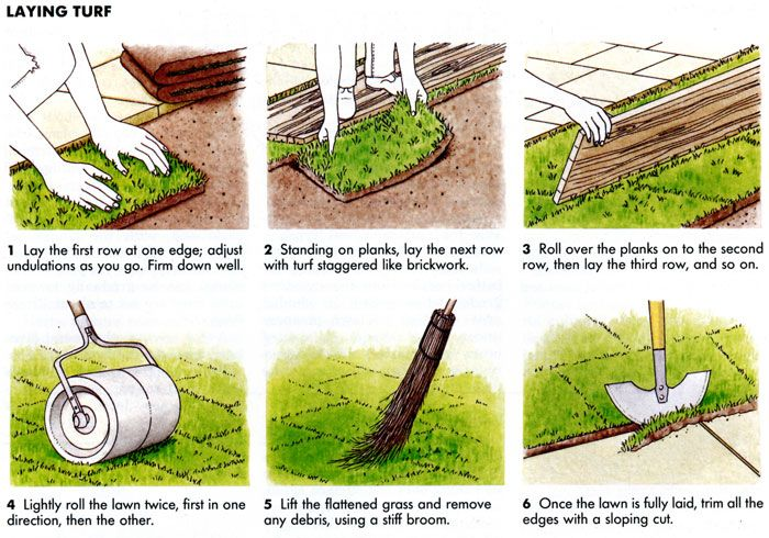 How to Lay a New Lawn | GreenFellas
