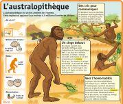 L'australopithèque - Le Petit Quotidien, le seul site d'information quotidienne pour les 6 - 10 ans !