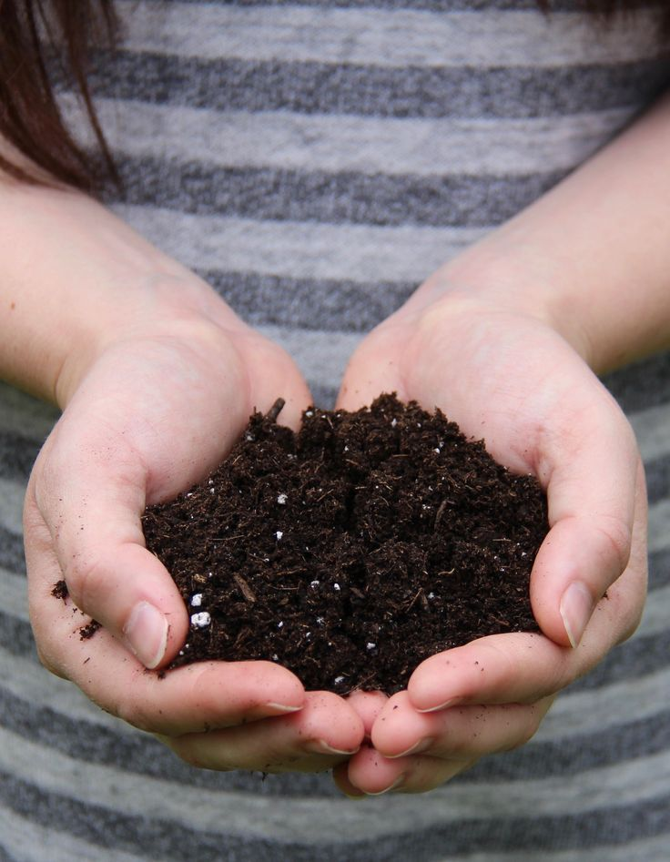 Types of Soil Explained - All about the different types of soil for your garden | Home for the Harvest #typesofsoil #gardening #soil #healthysoil #organicgardening #organic #permaculture