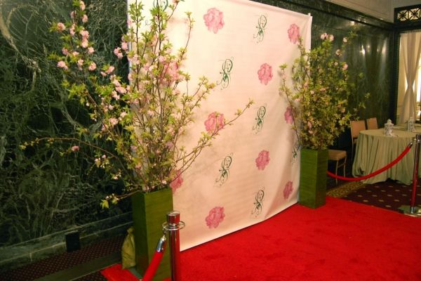 Find great deals on photography backdrops & Get high quality backdrops for red carpet, parties, events and more... visit to read more about backdrops http://www.signsny.com/large-format-printing/backdrops