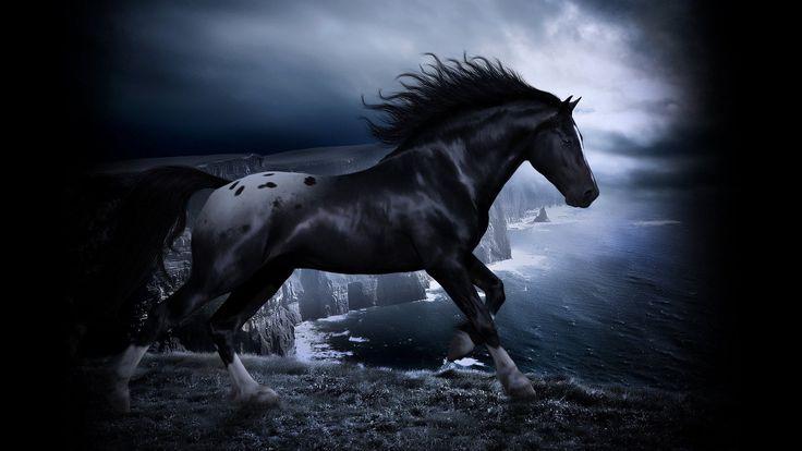 Black horses running at night - photo#2