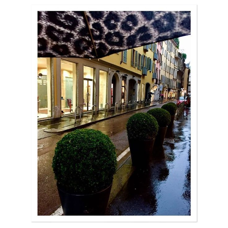 Today #pioggia #ingiro #moodoftheday #rainyday #milano -->follow me on Instagram!