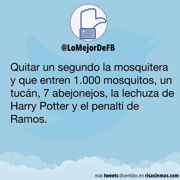 Quitar un segundo la mosquitera y que entren 1.000 mosquitos, un tucán, 7 abejonejos, la lechuza de Harry Potter y el penalti de Ramos.