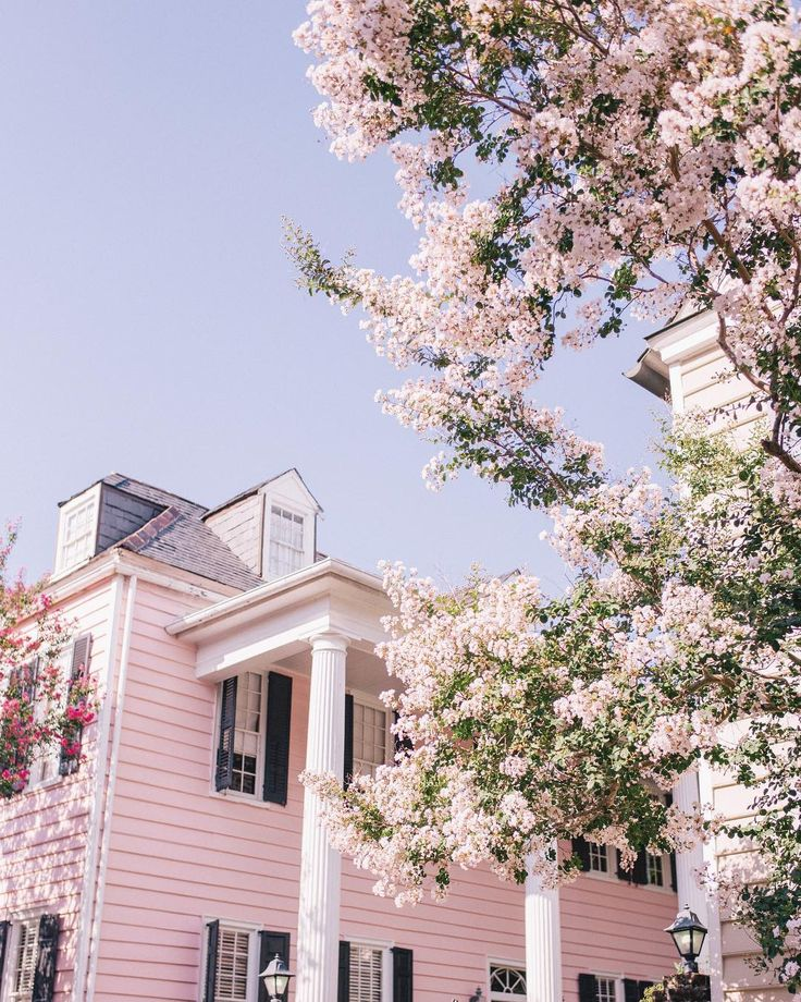 "7,937 Likes, 110 Comments - Julia Engel (Gal Meets Glam) (@juliahengel) on Instagram: ""A beautiful blush morning in Charleston #charleston #summertime #pink #explorecharleston…"""