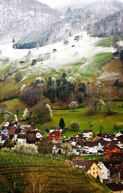 Liechtenstein. Color. One of the smallest countries in the world.