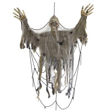 #Squelette dans toile d'araignée #LeGuide