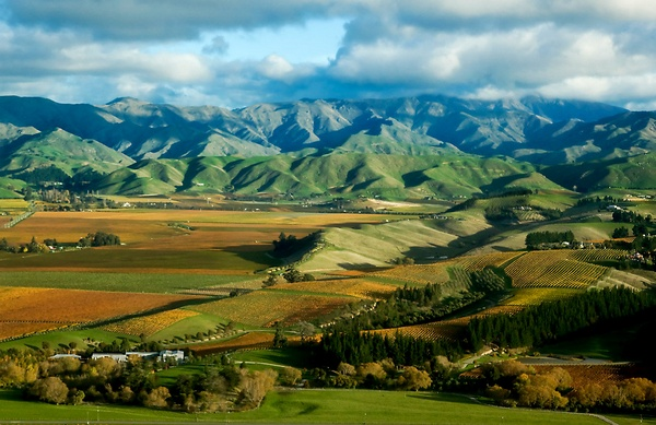 Autumn Vines & Withers Hills Marlborough, New Zealand