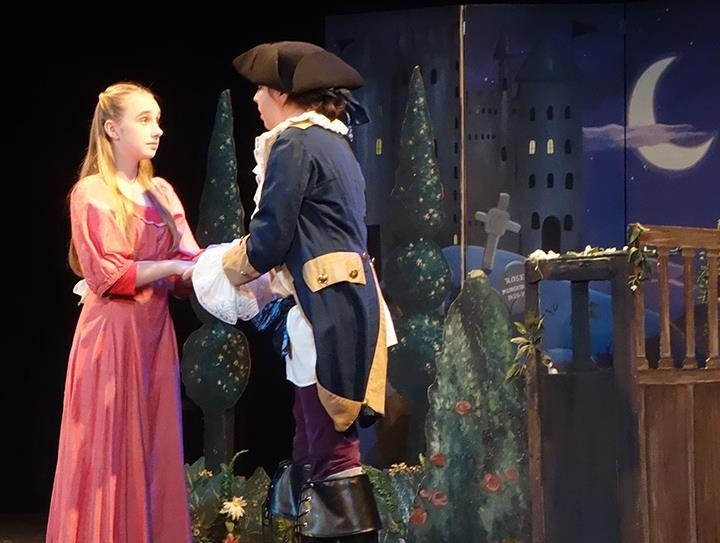 16 best pirates of penzance images on pinterest musical