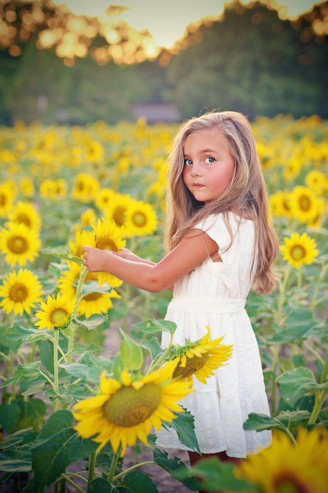 Sunflower field #chasinivy #flowerchild #wildflower