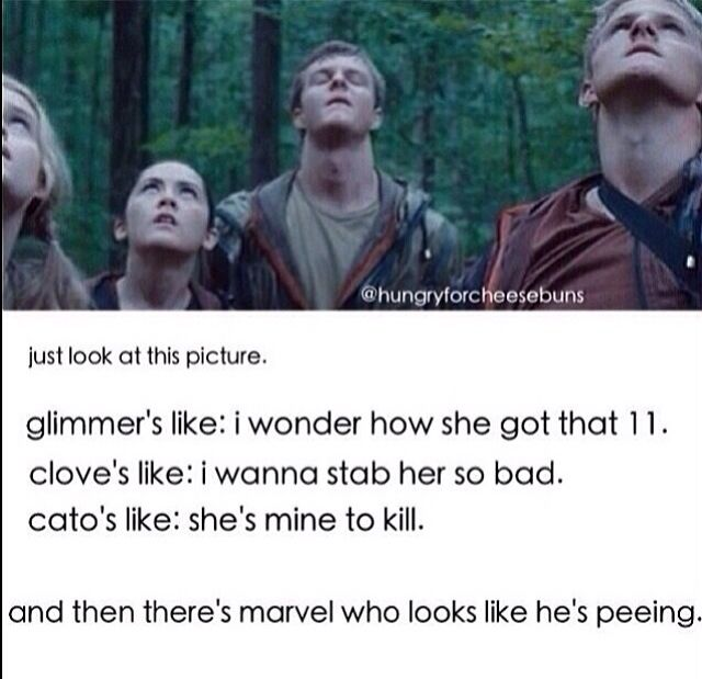630 best hunger games funny images on pinterest the hunger games one of my favorite tributes has got to be marvel my man find this pin and more on hunger games funny voltagebd Gallery
