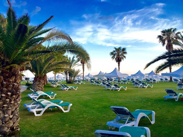 Sunbeds in our beautiful garden (photo taken by our guest Mike).