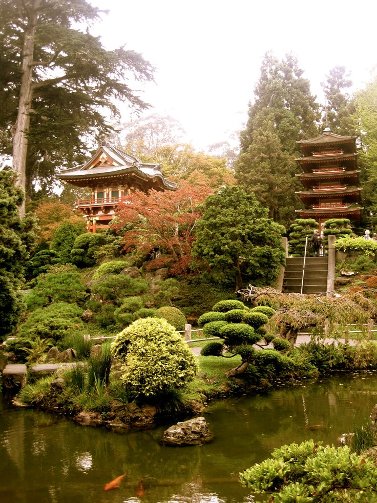 81 best places spaces images on pinterest beautiful for Koi pond japanese tea garden san francisco