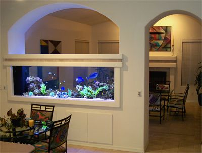 Aqua Touch Custom Aquariums