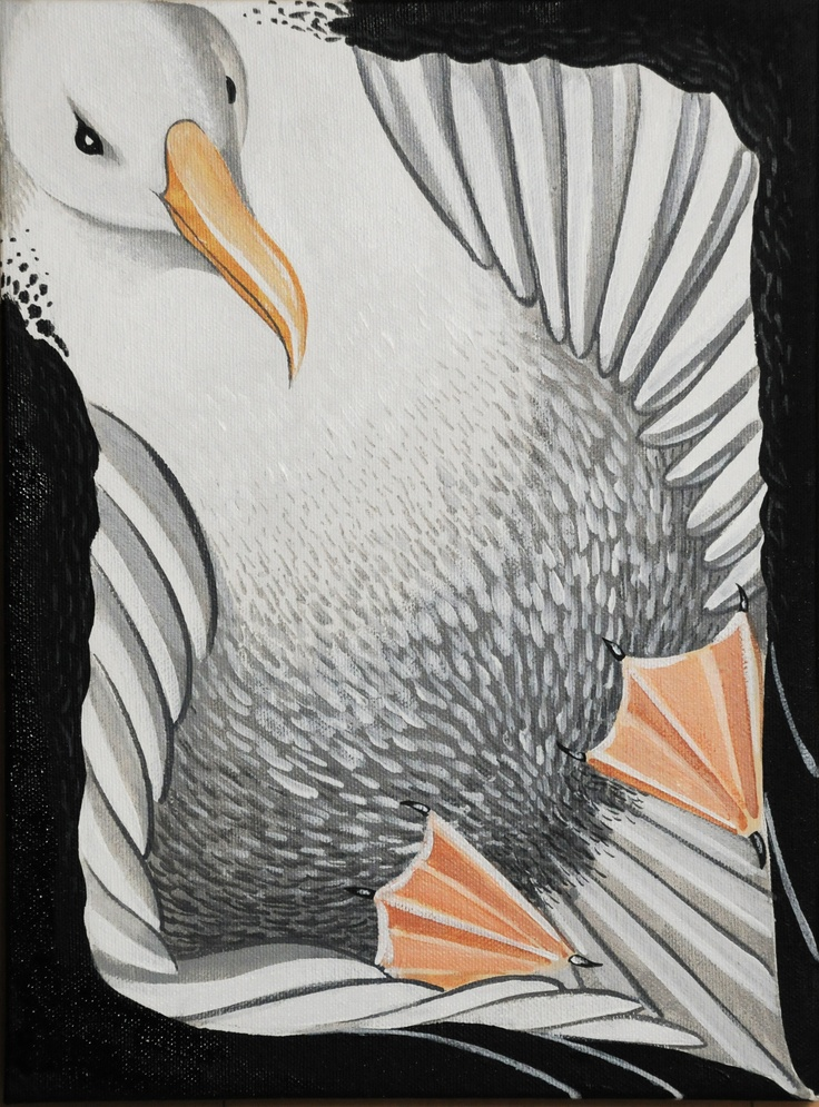 "Royal Albatross 9""x12""Acrylic on canvas"