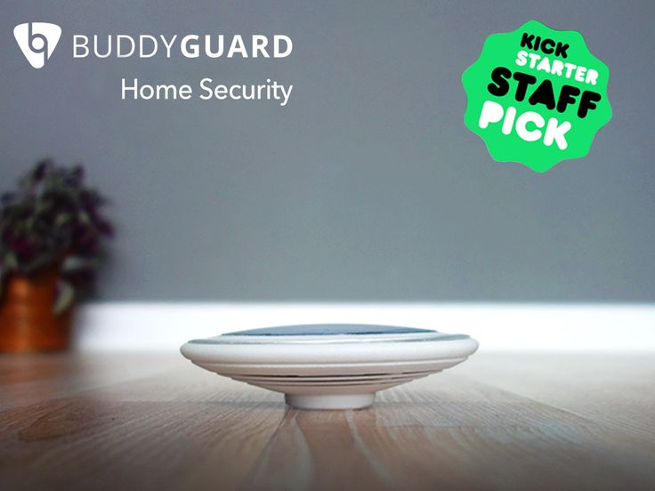Online home security system project
