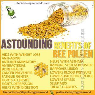 Benefits of Bee Pollen
