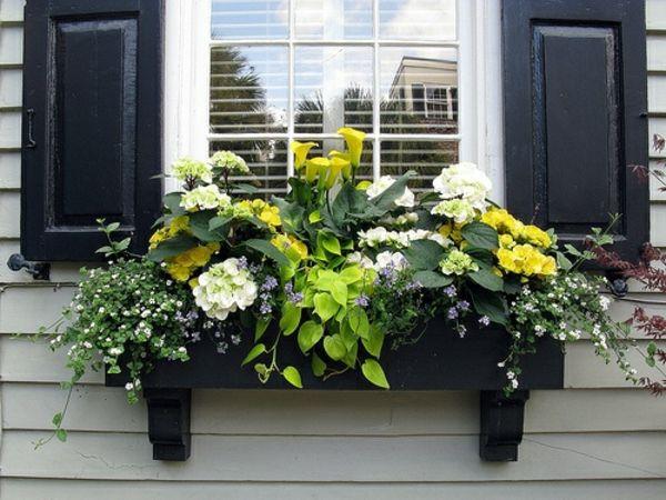 306 besten window boxes bilder auf pinterest balkonk sten balkon und topfgarten. Black Bedroom Furniture Sets. Home Design Ideas