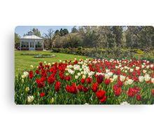 Tulips Short Lived Metal Print
