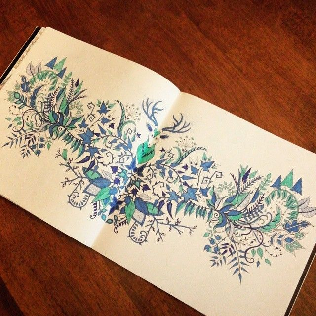 Johanna Basford Coloring Books Enchanted Forest Color To Paint Garden Drawings