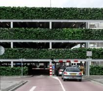 Green walls |Living Walls | Green Hoarding  http://treebox.co.uk/products/instant-green-screening.html?utm_source=instant-green-screening&utm_medium=instant-green-screening&utm_campaign=instant-green-screening&utm_term=instant-green-screening&utm_content=instant-green-screening#