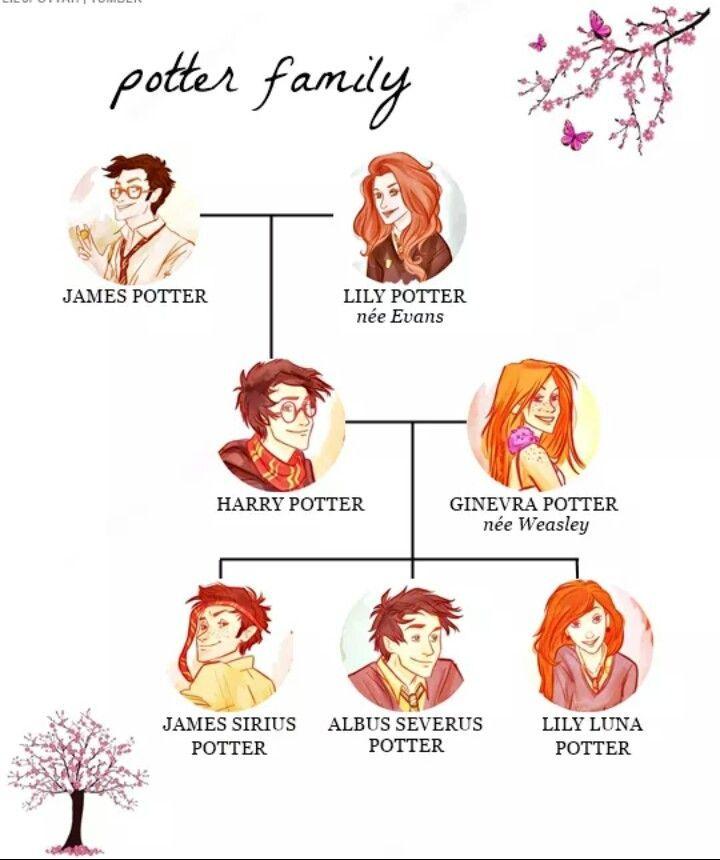 Potter Familie Familie Potter Harry Potter Anime Harry Potter Family Tree Harry Potter Drawings