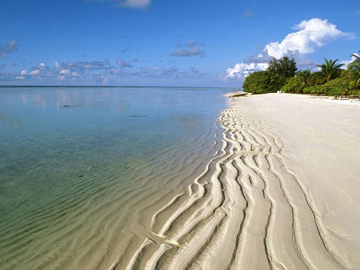 The beautiful shoreline of a beach in the Maldives.