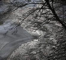 Wołosaty  River  31-01-2016. Andrzej Goszcz. by © Andrzej Goszcz,M.D. Ph.D