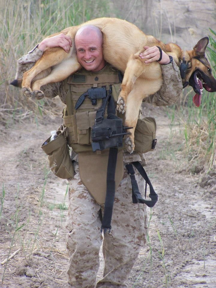 Here's hero dog Lucca K458 getting a lift from her beloved handler, Gunnery Sgt. Chris Willingham. Later in her career, with another caring handler, she lost a leg while hunting for IEDs. Lucca is now retired and living the good life with Willingham and his family.