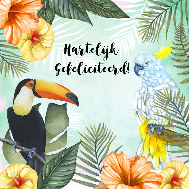 Verjaardagskaartje met mooie tropische toekan en papagaai en op de achtergrond tropische bloemen en bladeren in aquarel